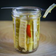 Bamboo Shoots: Harvesting, Preparing, and Pickling Wild Bamboo
