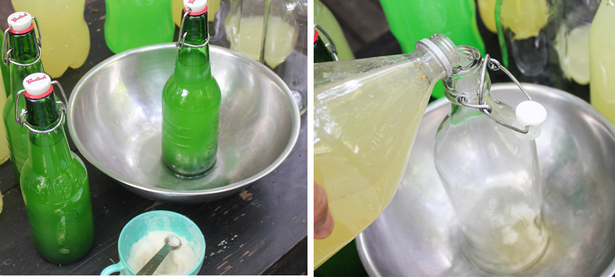 adding sugar to bottle elderflower champagne, bottling elderflower champagne